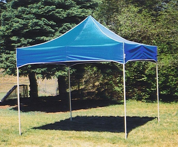 buy online d07b7 5347f KD Kanopy Party Shade Steel 10 x 10 Canopy Tent